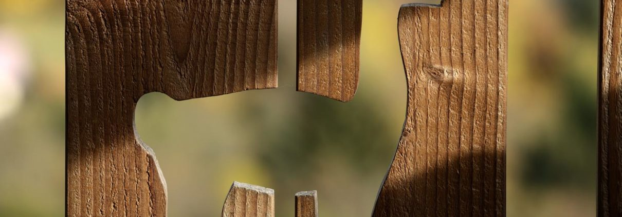 Auberge le Couchetat, La Bresse, Vosges, La montagne des lamas, loisirs, souvenirs, randonnées, élevage lamas, horaires visite guidée, réservations, contact